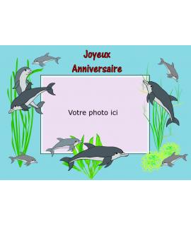 photo comestible dauphin pour gâteau