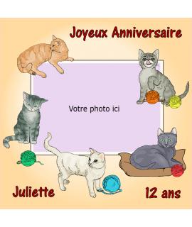 photo comestible chat pour gâteau