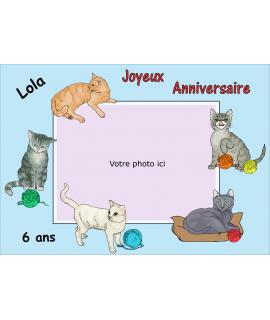 photo chat comestible pour gâteau