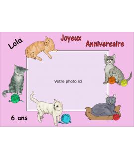 gâteau décoré photo comestible chat