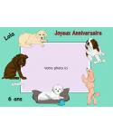photomontage comestible chien gâteau anniversaire